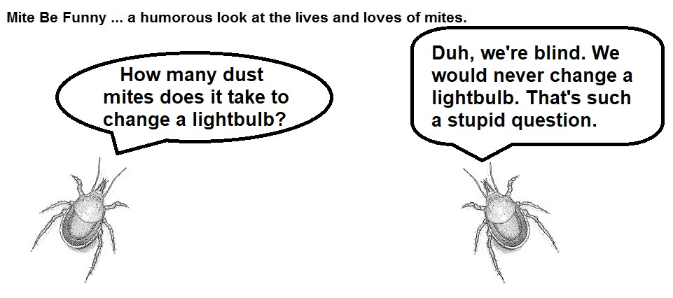 Mite Be Funny #129a Lightbulb