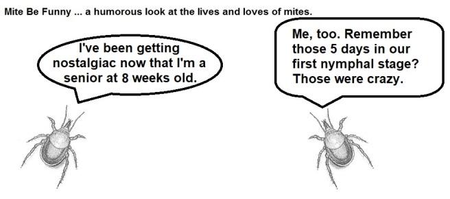 Mite Be Funny #135 - Nostalgia