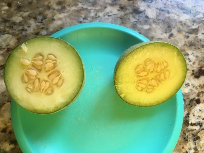 ball-fruit-3.jpg