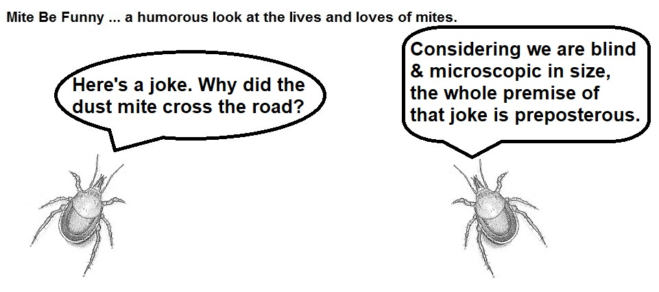 Mite Be Funny #138a Riddle