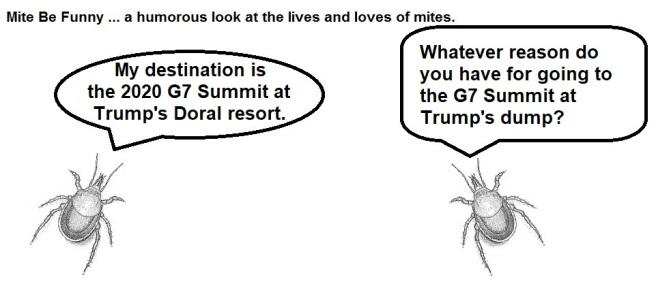 Mite Be Funny #139b G7