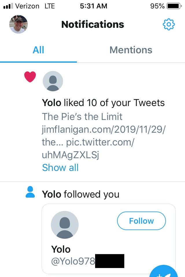Yolo1