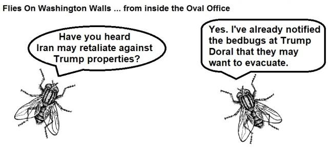 FOWW #161 Iran Bedbugs