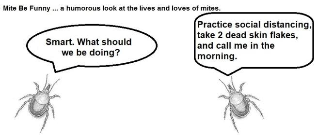 Mite Be Funny #162b Quarantine
