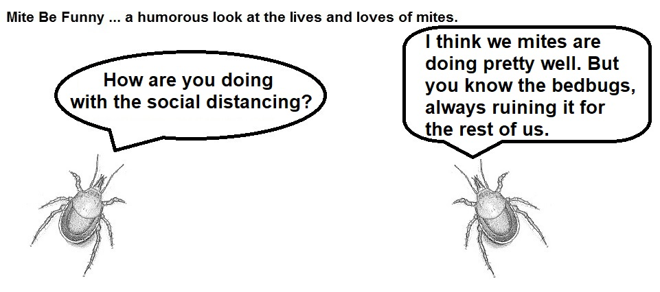 Mite Be Funny #163a Bloodsuckers