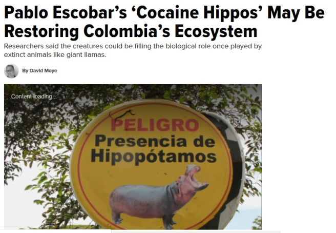 Pablo escobar cocaine hippos