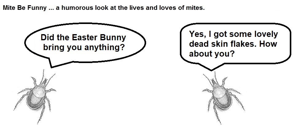 Mite Be Funny #165a Easter Bunny