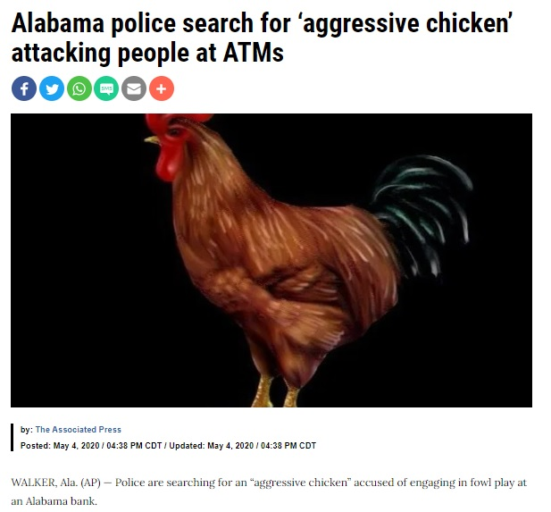 Chicken AL