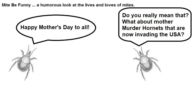 Mite Be Funny #169a Mother's Day