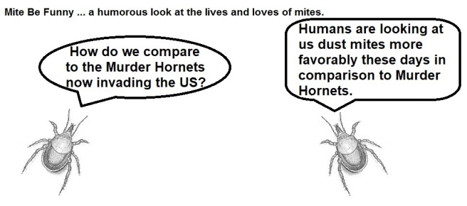 Mite Be Funny #170a Murder Hornets