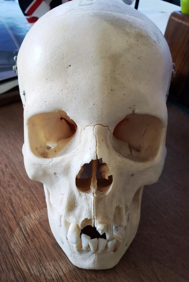 G Skull